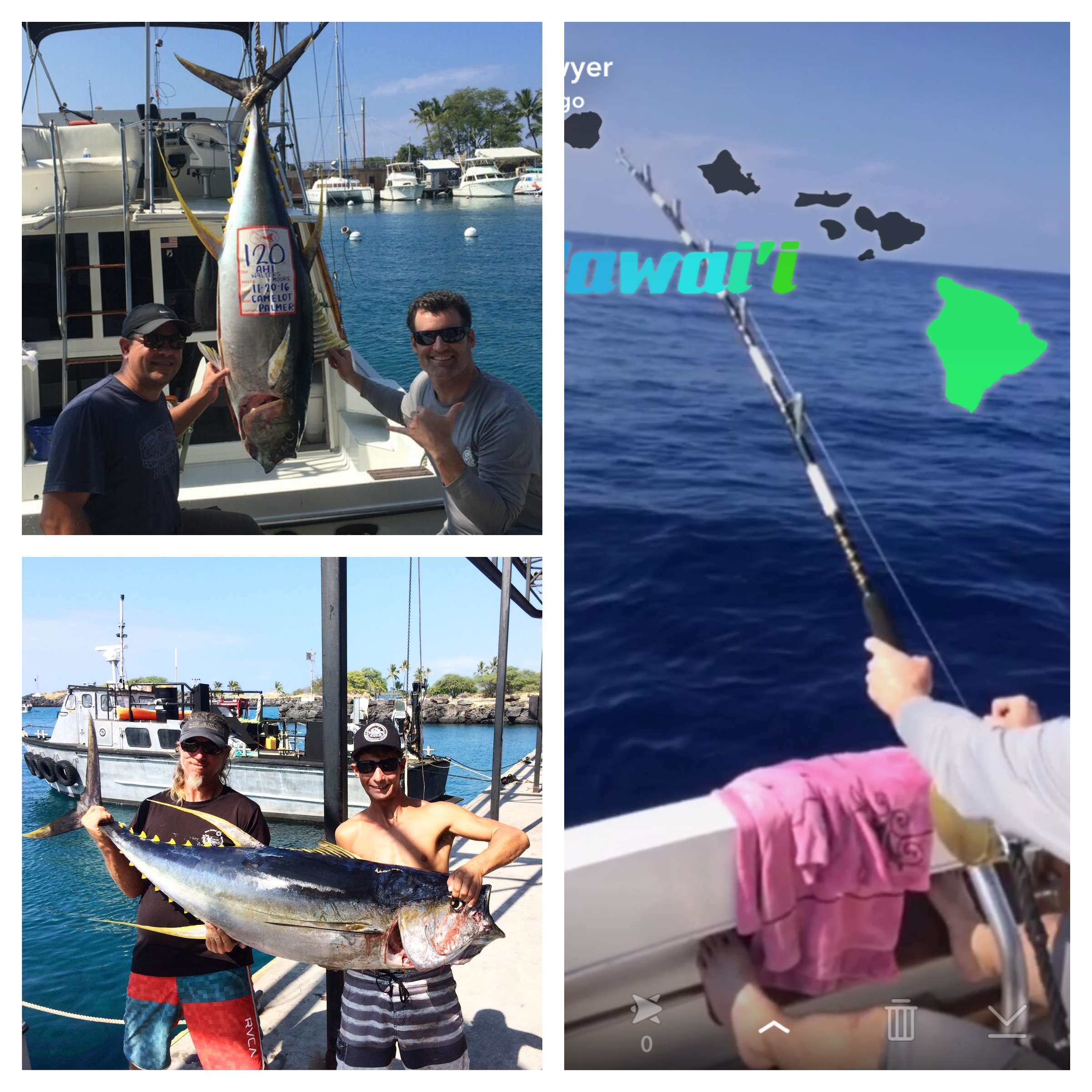Kona fishing report camelot sport fishing for Are fish biting today