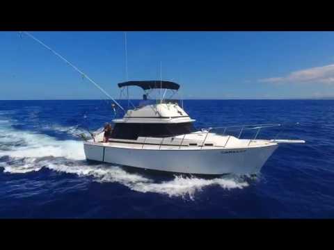 Camelot Kona Fishing Charters